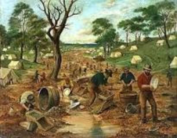 The Australian Gold Rush