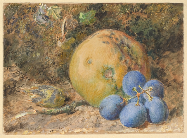 "WILLIAM HENRY HUNT "" Nature morte """