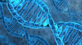 AVANCES GENETICOS timeline