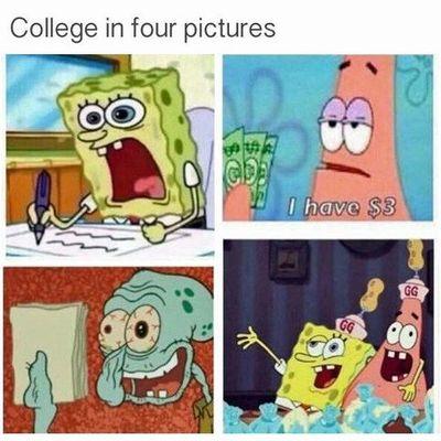 Live at university timeline