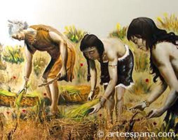Evolución de una sociedad agrícola