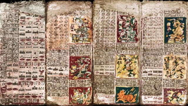 Codex in the  Maya region