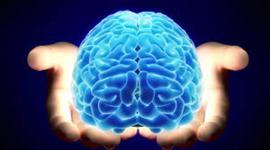 Eras in Intelligence Theories timeline