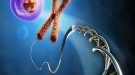 Linea de Tiempo de sucesos importantes en  Biología Molecular [Joel D. Anguila] timeline