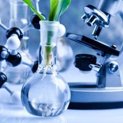 Bioquímica timeline