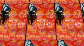 James Condo AP Biology: The Immortal Life of Henrietta Lacks timeline