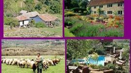 Historia del Turismo Rural timeline