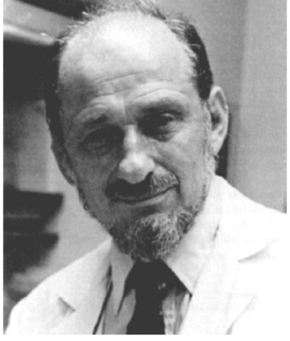 N. Geschwind 1965
