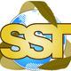 Sst logo 2014 clean.218141829 std