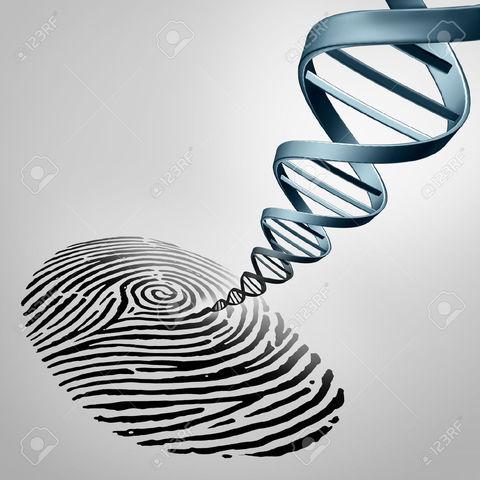 Huella genética