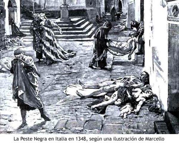 Ilustracion de Marcello