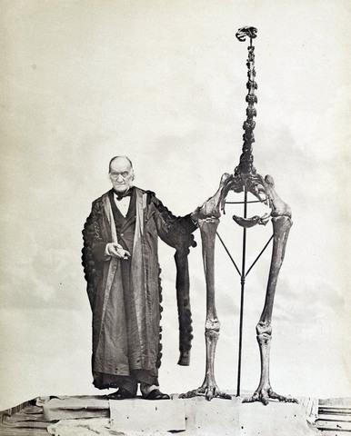 RICHARD OWEN (1804 - 1895)