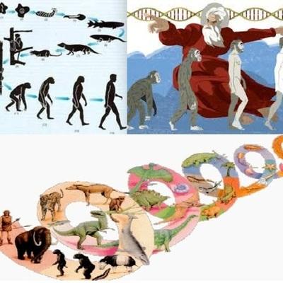 Evolución:Pensadores que colaboraron en la clasificación de los seres vivos timeline