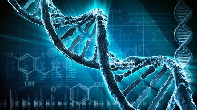 Sintetizan bases de la molécula de ADN