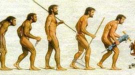 HISTORIA DE LA ADMINISTRACION timeline