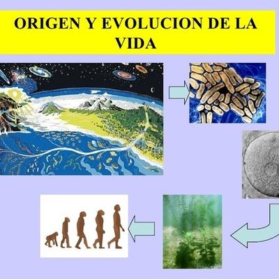 Evolucion timeline