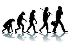 La evolución en el mundo timeline