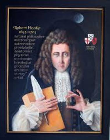 Llegada de Hooke a la reunión