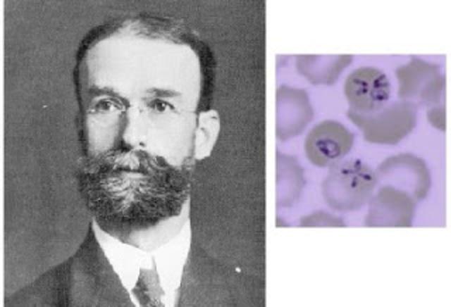 Smith: Descubrimiento Parasito causante de la llamada fiebre de Texas