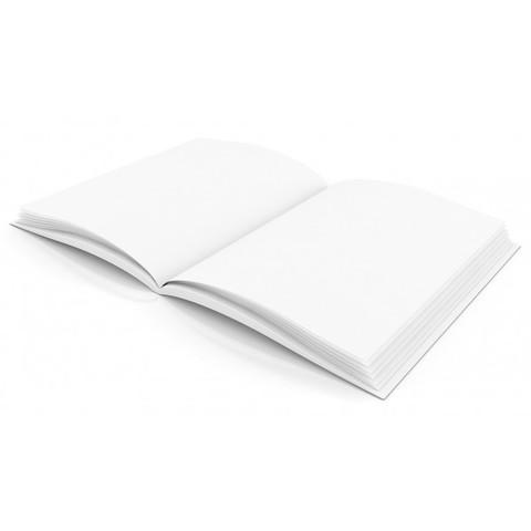 UE libro blanco sobre responsabilidad ambiental
