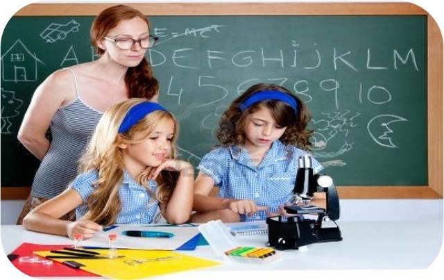 modelo pedagogico  desarrollista