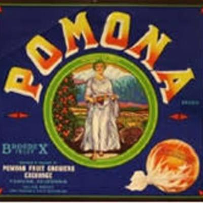 History Of Pomona timeline