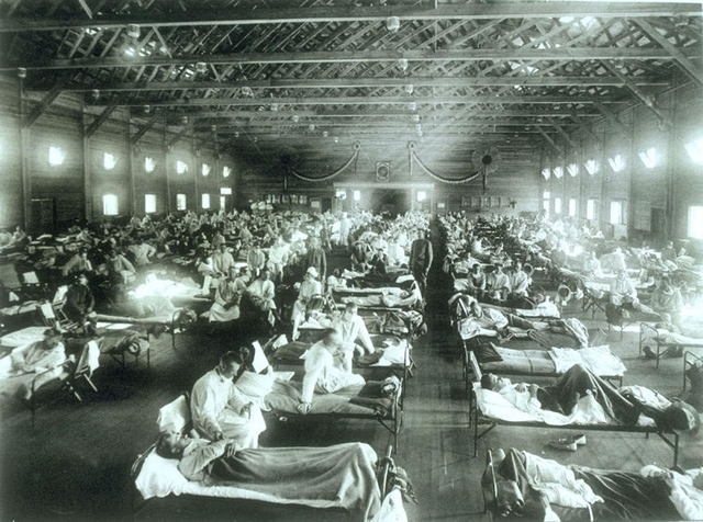 The Outbreak of the Influenza Disease
