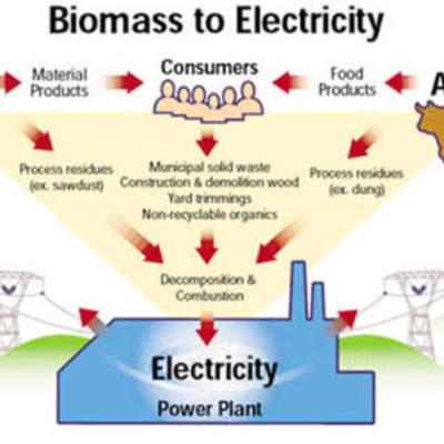Biomass power timeline