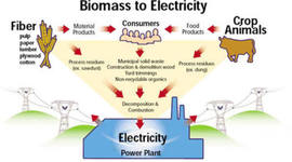 Biomass power timeline