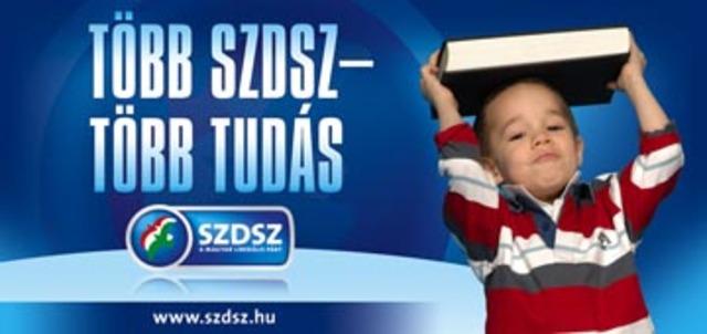 2006-os kampány