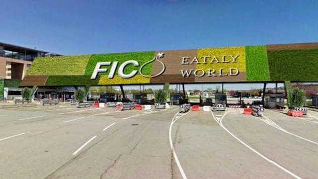F.I.CO.