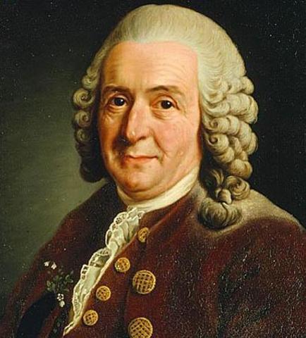 Clasificación y evolución (Linneo) (1707-1778)