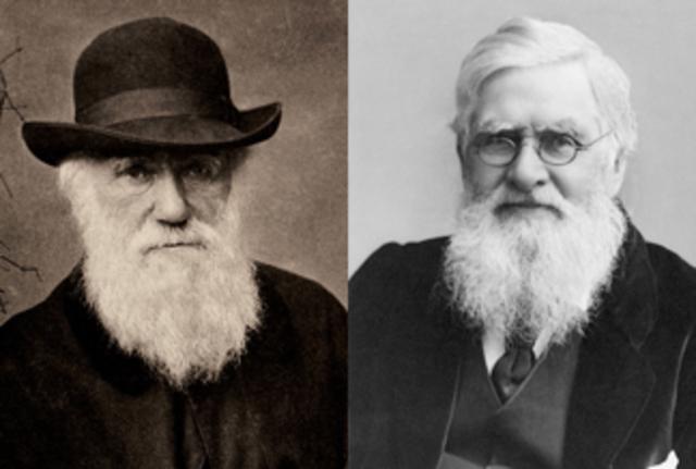 Darwin(1809-1882) y Wallace(1823-1913).La selección natural.