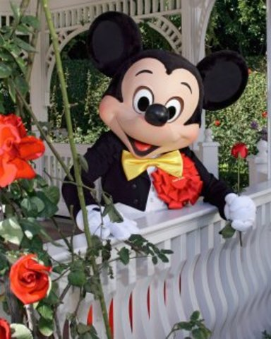 Grand Marshal of the Tournament of Roses Parade.