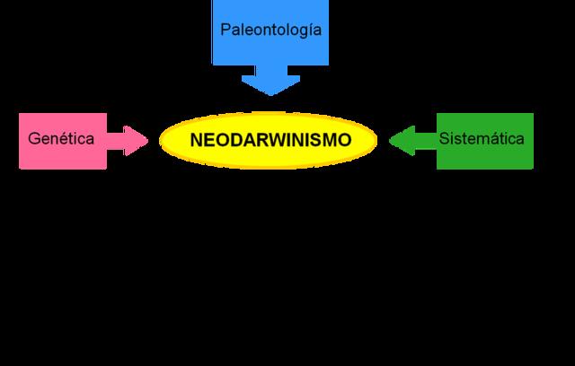 NEODARWINISMO O TEORÍA SINTÉTICA DE LA EVOLUCIÓN