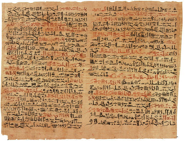Papyrus in Egypt