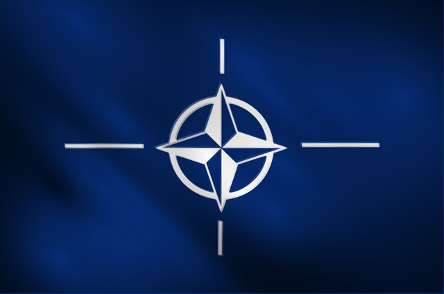 a history of the treaty of washington and the formation of north atlantic treaty organization The north atlantic treaty was signed in washington, dc, on 4 april 1949 the treaty of brussels, signed on 17 march 1948 by belgium, the netherlands, luxembourg, france, and the united kingdom, is considered the precursor to the nato agreement.