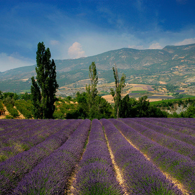 Histoire Provence timeline