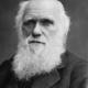 Charles darwin retrato