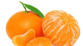 Tangerine Aldo D. timeline