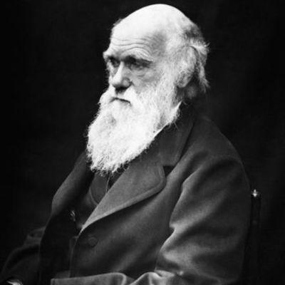 Biografía de Charles Darwin por Silvia P.G. timeline