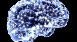 Historia de la Redes Neuronales y el Deep Learning timeline