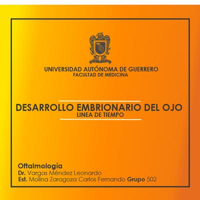 DESARROLLO EMBRIONARIO DEL OJO timeline