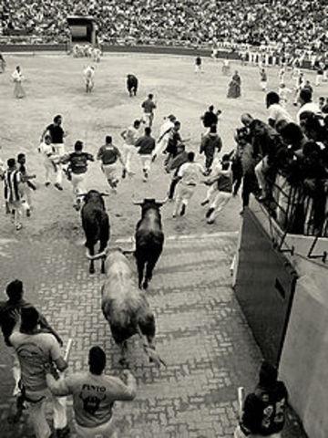 Pamplona (Running of the Bulls)