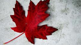 Canada: 1700 - 1900 timeline