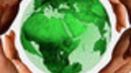 المنظومات الخضراء timeline