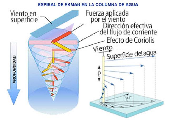 """Vagn Ekman """"Teorías de la dinámica de las corrientes oceánicas"""""""