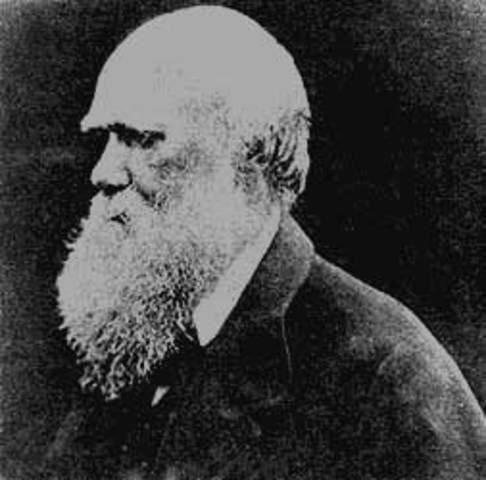 Darwin a bordo del HMS Beagle