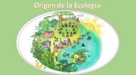 Antecedentes de la ecología timeline