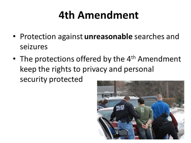 Constitutional Law: Violation of the Fourth Amendment - Words   Essay Example